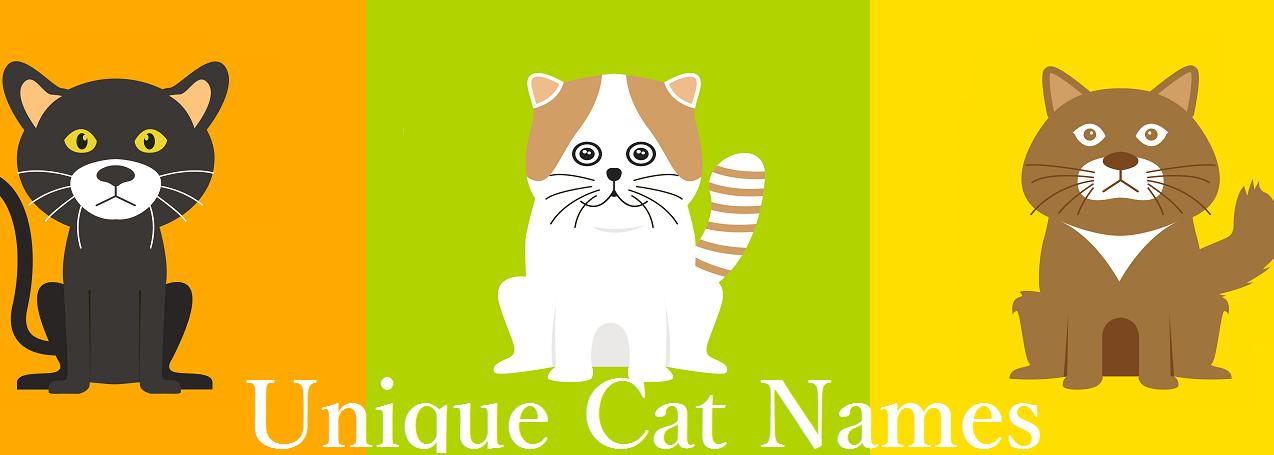 Unique Cat Names - Unique Cat Names
